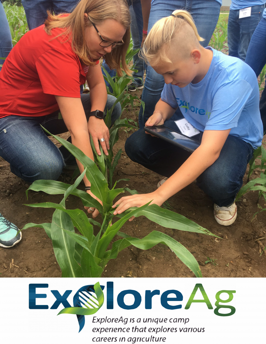 Boy examining a corn plant with an expert in the feild
